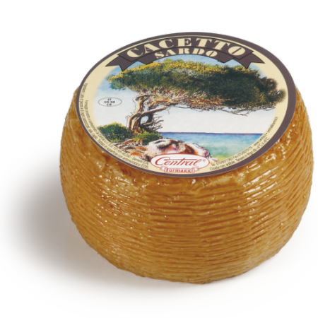Cacetto Sardo cheese
